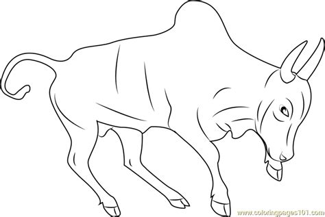 Indian Bull Coloring Page Free Bull Coloring Pages Bull Coloring Pages