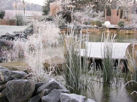 Garten Pflanzen Frostschutz by Wirkungsvoller Frostschutz F 252 R Gartenpflanzen ǀ Galanet
