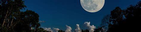 Tailler Avec La Lune by Taillez Les Arbres Fruitiers En Fonction De La Lune Gamm