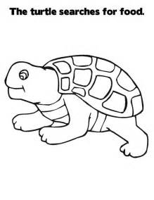 what color are the turtles free printable turtle coloring pages for