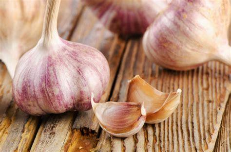 ate garlic rocambole garlic for