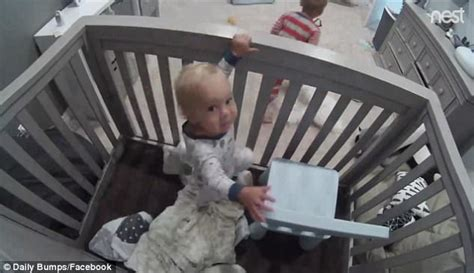 Baby Escapes Crib Baby Escapes From Crib Baby Escapes Crib Best Gifs Updated Daily Baby Escapes From Crib Baby