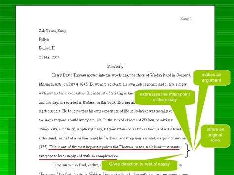 Essay Questions In Anatomy by Thesis Fiction