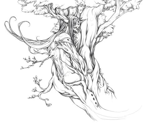 oak tree by sialyx on deviantart