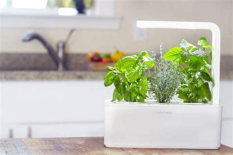 Creative Indoor Herb Garden Ideas 7 Creative Diy Indoor Herb Garden Designs You Re Sure To Homeyou