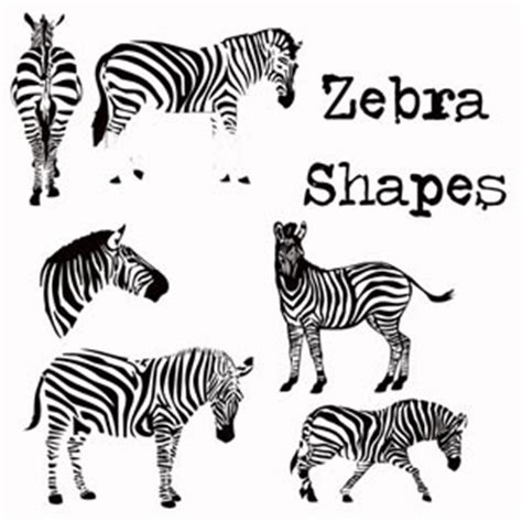 zebra pattern psd zebra photoshop custom shapes