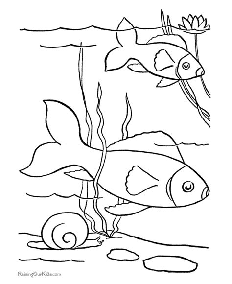 free coloring pages pond animals fish coloring pages for kids coloring home