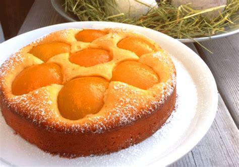quark aprikosen kuchen versunkener aprikosenkuchen k 252 chenmomente