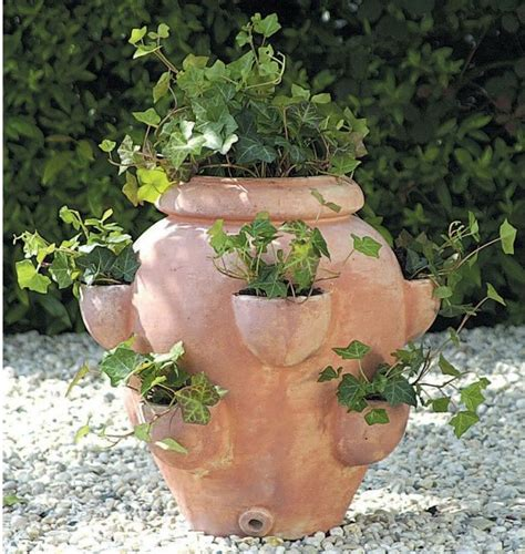 planters and pots terra cotta round fishbowl tascandi strawberry jar planter