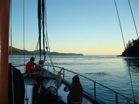 party boat airlie beach whitsunday islands airlie beach boat tours