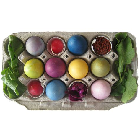 egg coloring kit easter egg coloring kit colorkitchen