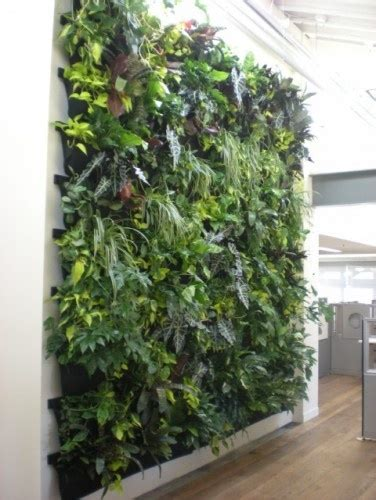 herb wall herb wall gardening pinterest