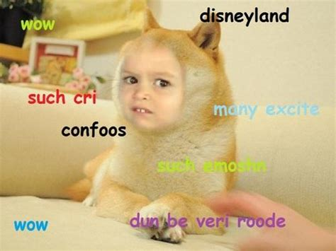 Chloe Disneyland Meme - doge chloe side eyeing chloe know your meme