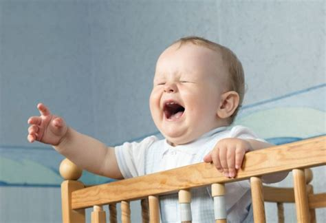baby won t sleep in the crib or bassinet sleep baby sleep