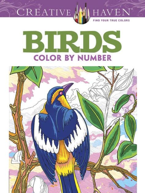 color by number books creative birds color by number coloring book by