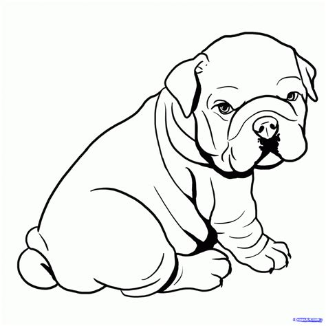 coloring pages of bulldogs draw a bulldog clipart best