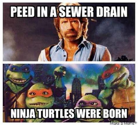 film ninja chuck norris 17 best images about teenage mutant ninja turtles on