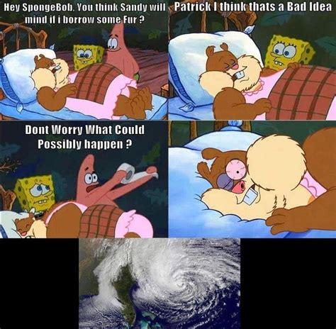 Spongebob Memes - post spongebob memes spongebob spongebuddy mania