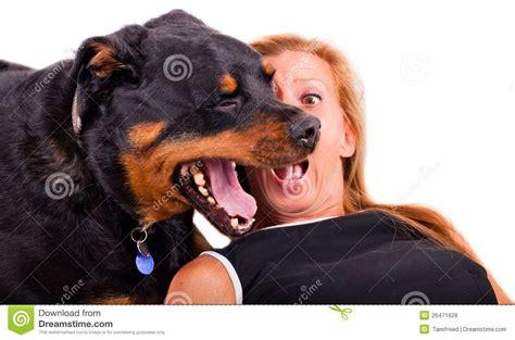 abotonada por un perro videos de zoofilia mujer abotonada por un perro auto design tech
