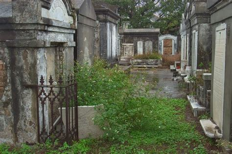 Cemetery Search Lafayette Cemetery New Orleans Search In Pictures