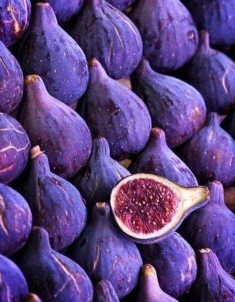 25 best ideas about dark purple on pinterest dark purple hair dye dark purple hair and