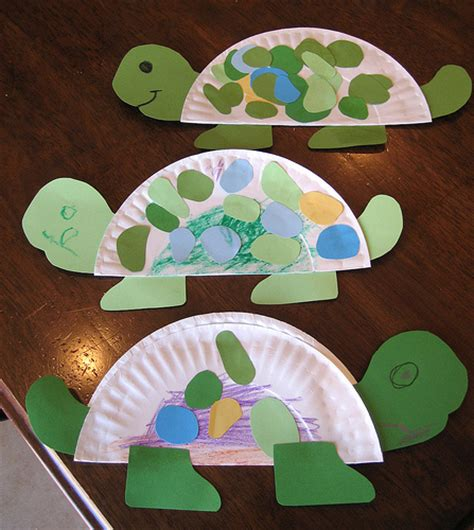 craft ideas for kindergarten turtle flickr photo
