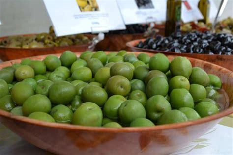 olive da tavola olive da tavola un corso su produzione lavorazione e