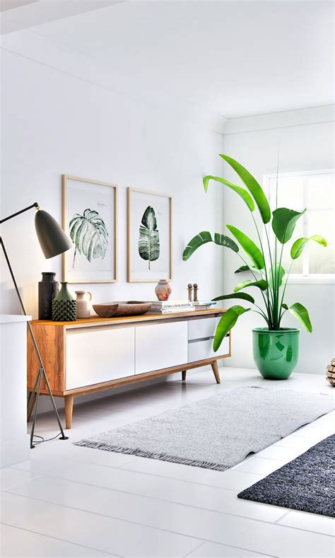 modern living room design best 25 living room plants ideas on plants