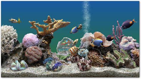 telecharger marine aquarium gratuit t 233 l 233 charge