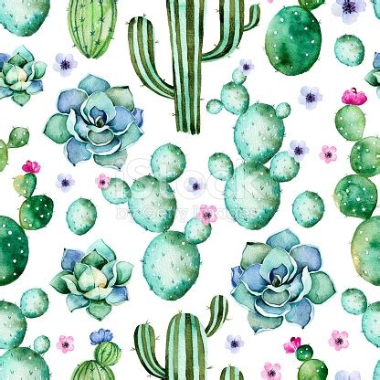 pastel cactus pattern seamless pattern with watercolor cactus plantssucculents
