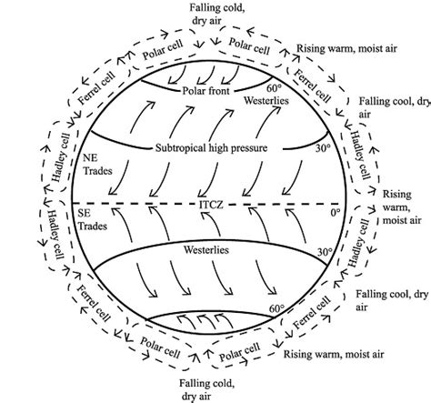 diagram of coriolis effect explaining the vortex danielyeow