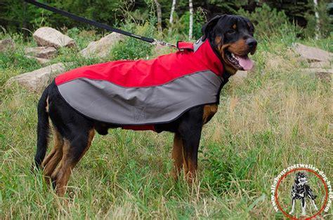 rottweiler coat order rottweiler coat winter walking
