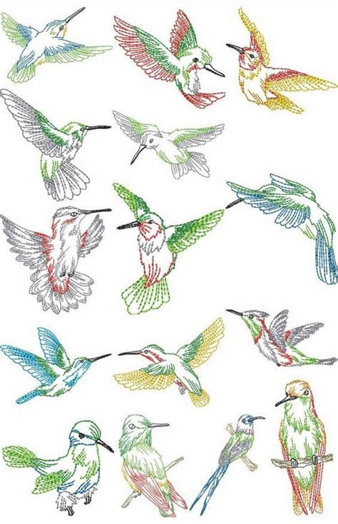 embroidery muster hummingbird embroidery patterns free humming bird