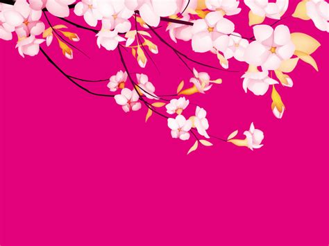 pretty powerpoint templates flower pink pretty powerpoint templates flower pink