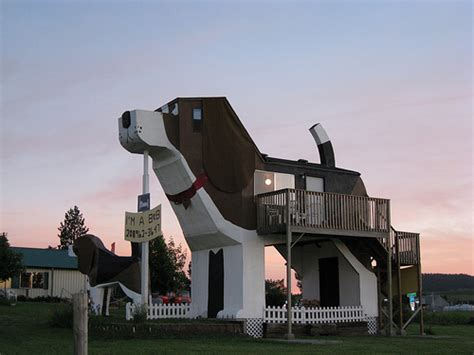 dog tree house treehouses and big dogs are these the worlds quirkiest cabins