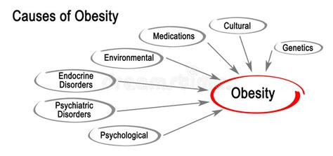 10 Causes Of Obesity by Causes Of Obesity Stock Photo Image Of Psychology