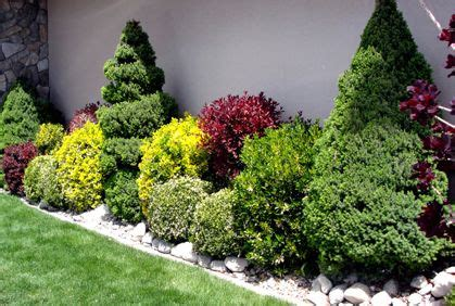landscaping bushes landscaping with shrubs and bushes photos and design ideas landscaping shrub