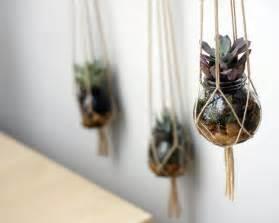 diy hanging planter diy hanging succulent planters decoist