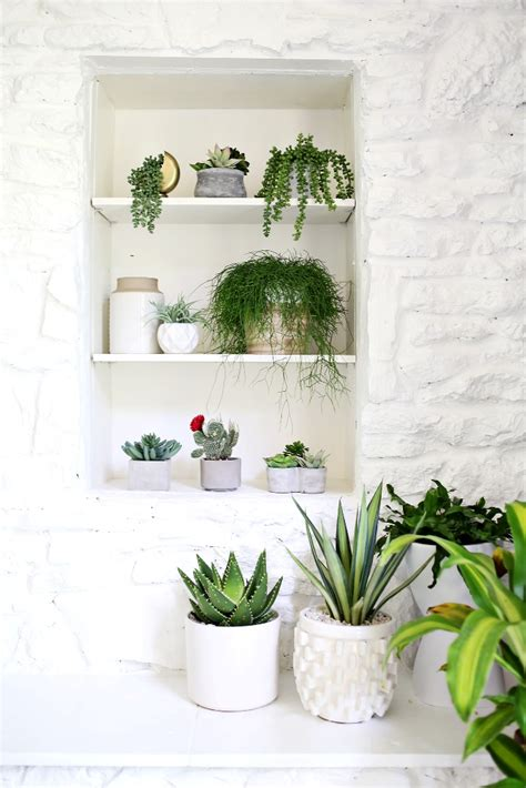 artificial bathroom plants 10 ideas for rustic bathroom decor to inspire you