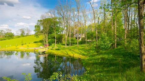 Amish Country Cabins Ohio by The Briarwood Cabin Briarwood Amish Country Cabins On