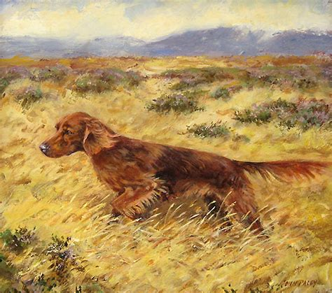 irish setter working dog irish setter in field original oil painting by dog