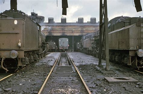 Sheds Peterborough by Peterborough Engine Shed 1964 Peterboroughimages Co Uk