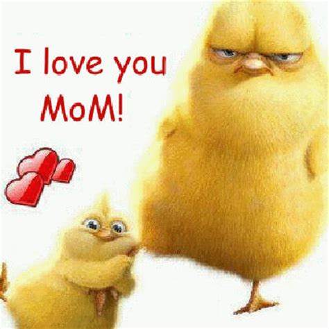 i love you mom quotes funny i15 my honeys place