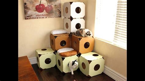 Cat Friendly Home Design by Cat House Amp Cat Toys Diy From Cardboard Boxes Youtube