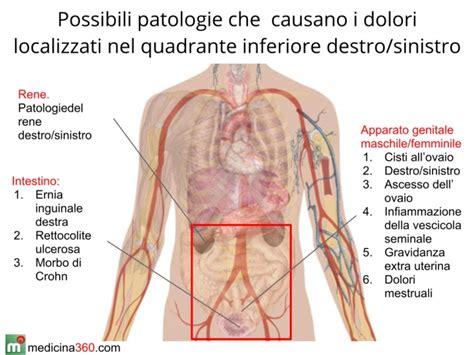 organi interni corpo umano lato sinistro ricerche correlate a corpo umano organi interni parte