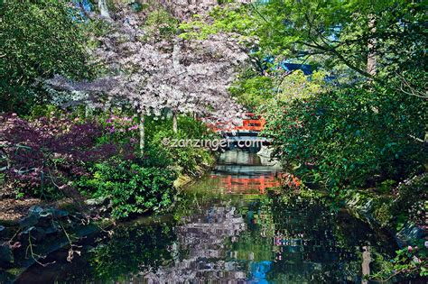 La Canada Botanical Gardens Descanso Gardens La Canada Flintridge Ca Japanese Tea House Bridge David Zanzinger Unique