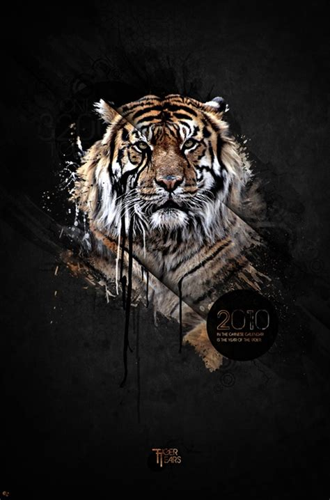 pattern illustrator tiger design work of martin grohs illustrators photo