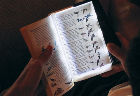 the light books led book light with rechargeable battery sharper image