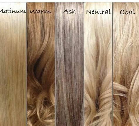 different shades of hair color chart best 20 different shades of ideas on