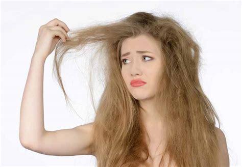 Minyak Zaitun Untuk Rambut Kering 7 perawatan rambut kering dan kasar secara alami